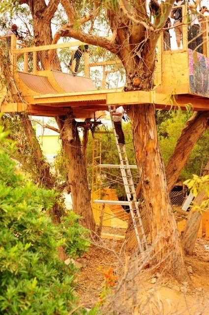 The Volcom Tree House Mini Ramp